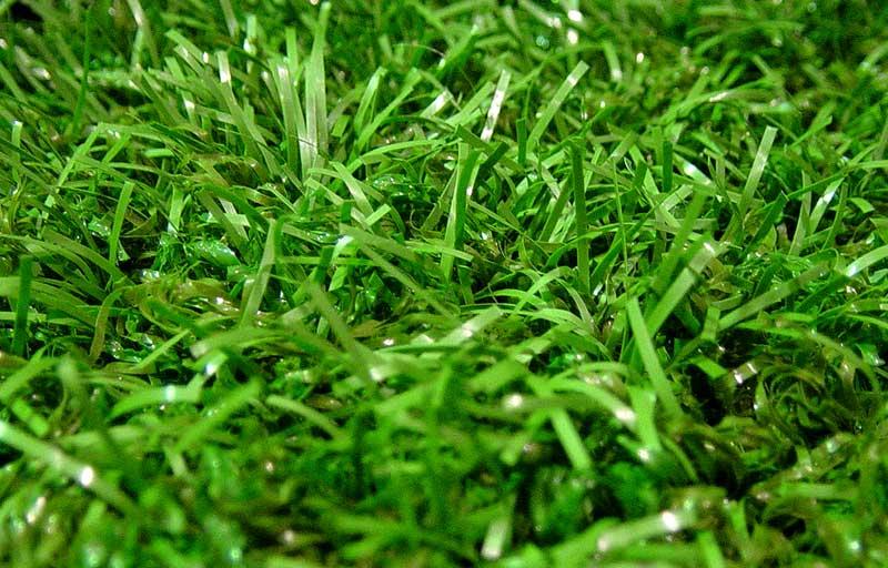 gazon synth tique gs home indoor est la belle pelouse artificielle d 39 int rieur des pi ces de vie. Black Bedroom Furniture Sets. Home Design Ideas